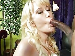 Hottie Alana Evans wraps her lips round this huge dick