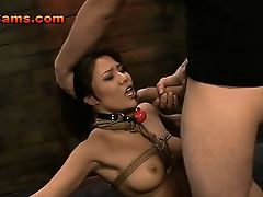 Hot Asian Rides Sybian Bound